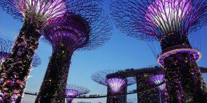 Singapore: int'l grads struggle to find jobs
